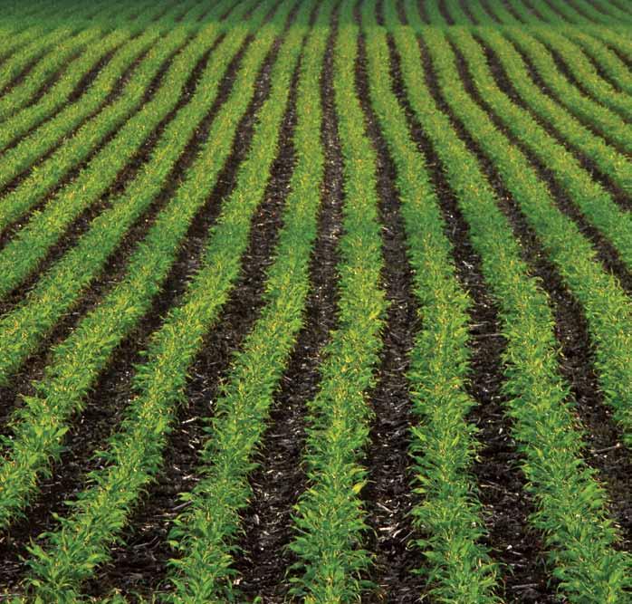 Agriculture hve